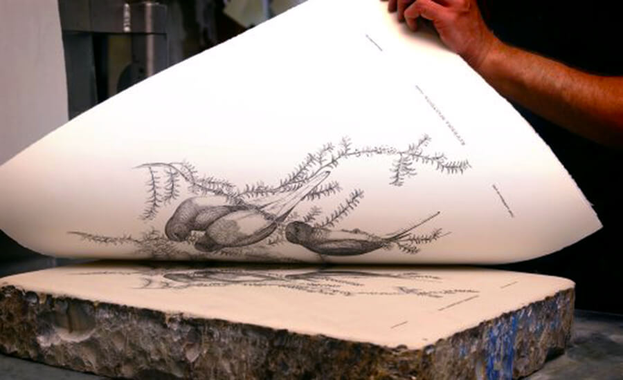 Lithography, The Story Of A Lost Art At Lalit Kala Akademi! - My City Links
